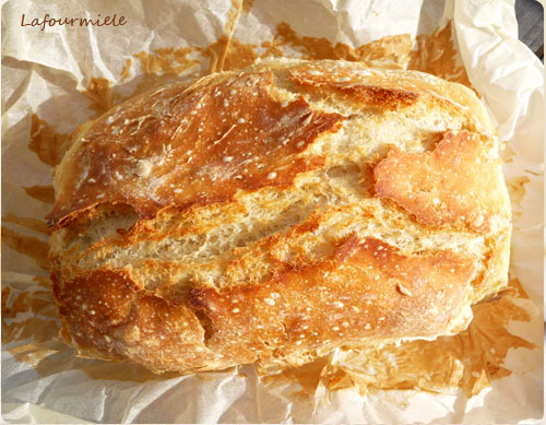 Pain sans pétrissage - no knead bread