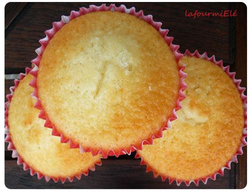 muffin michalak à la vanille