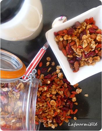 granola-aux-baies-goji-cranberries