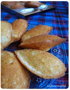 madeleines-vanille-et-rhum