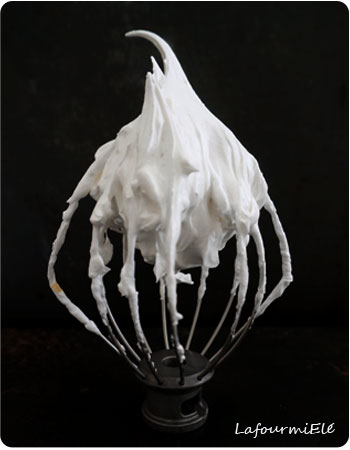 meringue-pics