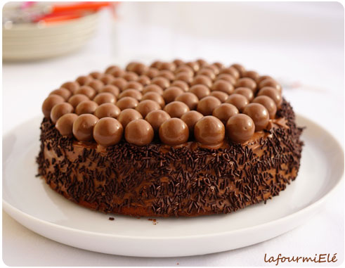8 ans et un gâteau au chocolat plus tard ! | la fourmi elé