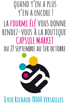 La fourmi Elé chez Capsule market - Versailles