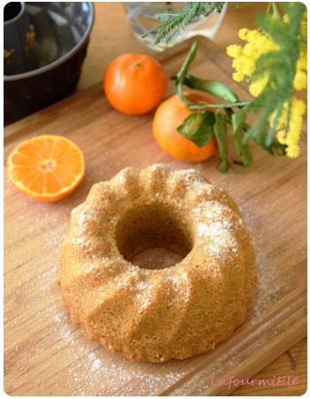 gateau-aux-epices-et-clementines-3